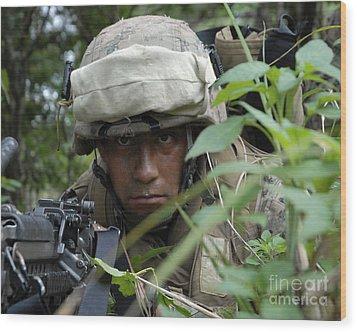 A Rifleman Conceals Himself Wood Print by Stocktrek Images
