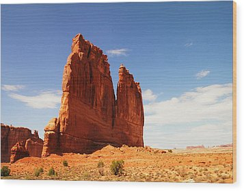 A Rock At Arches Wood Print by Jeff Swan