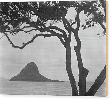 A Rock Formation In The Pacific Ocean, Oahu, Hawaii Wood Print by Brian Caissie