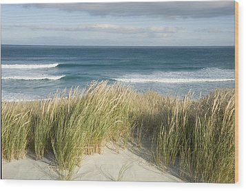 A Scenic Hillside Of The Beach Wood Print by Bill Hatcher