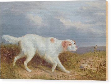 A Setter On The Moor Wood Print by Philip Reinagle