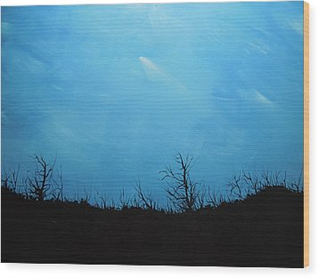 A Shooting Star In An Azure Sky Wood Print by Dan Whittemore