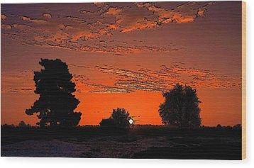 A Silent Sun Wood Print by Viveka Singh