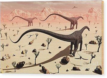 A Small Group Of Diplodocus Sauropod Wood Print by Mark Stevenson