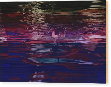 A Swimming Duck Breaks Up The Colorful Wood Print by Stephen St. John