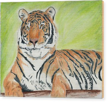 A Tiger's Rest Wood Print by Mark Schutter