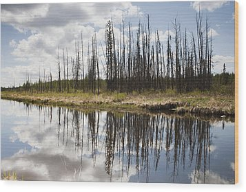 Wood Print featuring the photograph A Tranquil River With A Reflection by Susan Dykstra