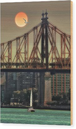 A Trip Under The Bridge Wood Print by Tom York Images