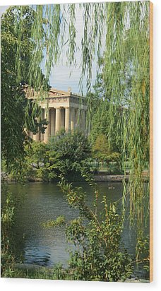 A View Of The Parthenon 1 Wood Print by Douglas Barnett