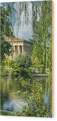A View Of The Parthenon 13 Wood Print by Douglas Barnett