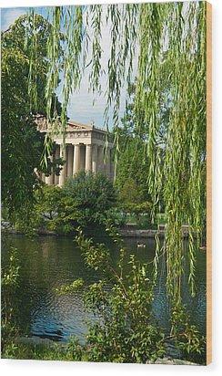 A View Of The Parthenon 9 Wood Print by Douglas Barnett