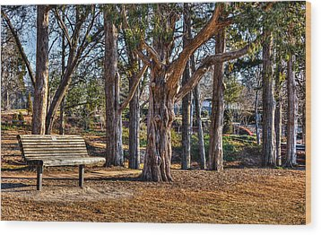 A Walk In The Park Wood Print by Doug Long