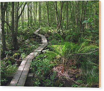 Wood Print featuring the photograph A Walk In The Woods by Doug McPherson
