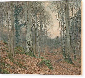 A Welsh Wood In Winter Wood Print by JT Watts
