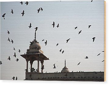 A Whole Flock Of Pigeons On The Top Of The Ramparts Of The Red Fort In New Delhi Wood Print by Ashish Agarwal