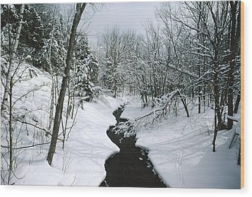 A Winter View Of Rush Brook Wood Print by James P. Blair