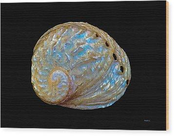 Abalone Shell Wood Print by Mitch Shindelbower