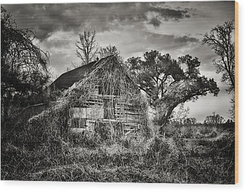 Abandoned Barn 2 Wood Print by Brenda Bryant