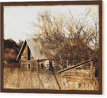 Abandoned Barn  Wood Print by Ann Powell