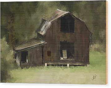 Abandoned Barn Wood Print by Dale Stillman