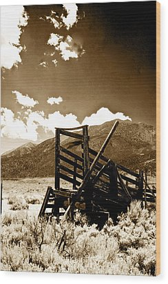 Abandoned Cattle Shoot Wood Print by Gary Brandes