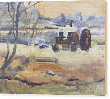 Abandoned Wood Print by Elena Liachenko