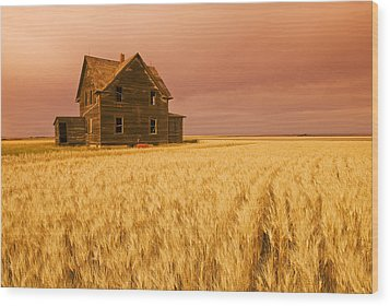 Abandoned Farm House, Wind-blown Durum Wood Print by Dave Reede