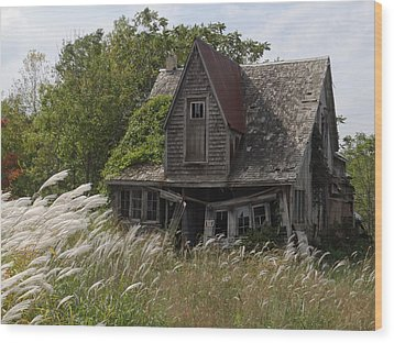 Abandoned Farmhouse 2 Wood Print by Bruce Ritchie