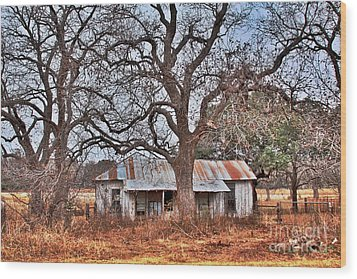 Abandoned House 512.3 Wood Print by Joe Finney