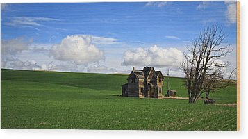 Abandoned House On Green Pasture Wood Print by Steve McKinzie