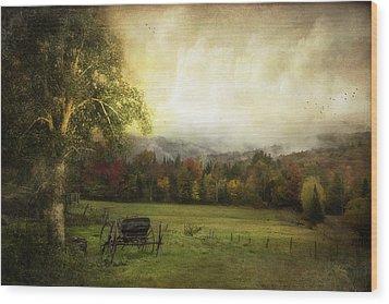 Abandoned Wagon Wood Print by John Rivera