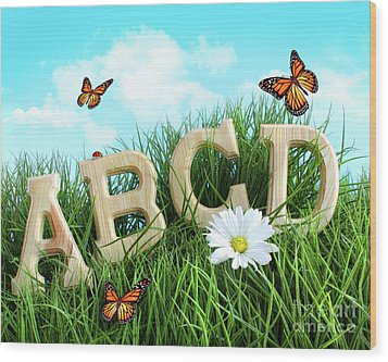 Abc Letters With Daisy In Grass Wood Print by Sandra Cunningham