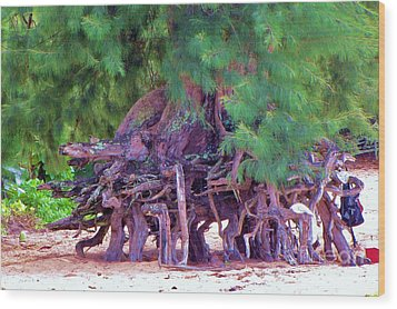 Wood Print featuring the photograph Above Ground Roots On Tamarisk Tree  by Michele Penner