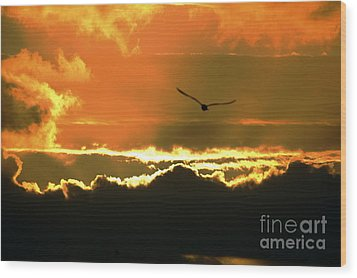 Above The Clouds Wood Print by Johanne Peale