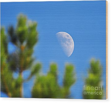 Above The Pines Wood Print by Al Powell Photography USA