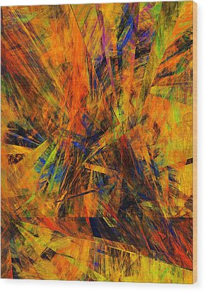 Abstract 100611 Wood Print by David Lane
