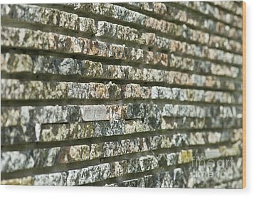 Abstract Background Of Decorative Stone Wood Print by Valerii Kotulskyi