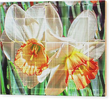 Abstract Daffodils  Wood Print by Cathie Tyler