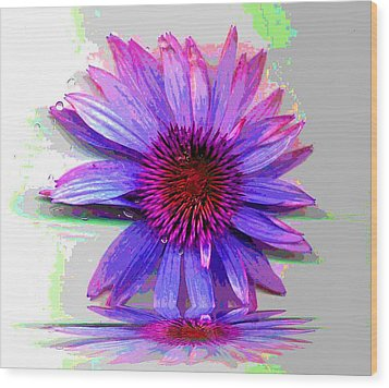 Wood Print featuring the photograph Abstract Daisy by Carolyn Repka