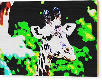 Abstract Giraffe Wood Print