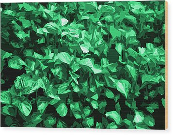 Wood Print featuring the photograph Abstract Greeen by Serene Maisey