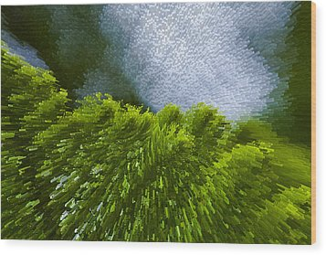 Abstract Pine Wood Print by Serene Maisey
