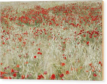 Abstract Poppies Wood Print by Guido Montanes Castillo