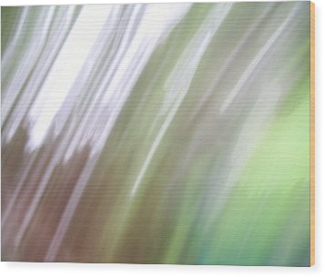 Wood Print featuring the photograph Abstracted Air by Ginny Schmidt