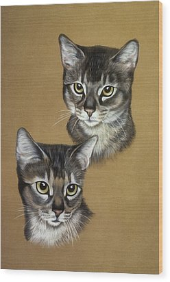 Abyssinian Cats Wood Print by Patricia Ivy