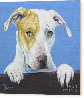 Ac Pup Wood Print by Pat Burns