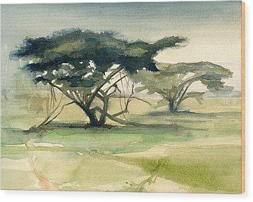 Acacia Wood Print by Stephanie Aarons