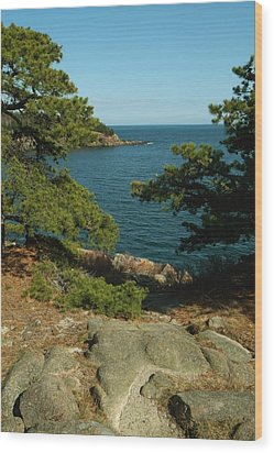 Acadia In Maine Wood Print by Rick Frost