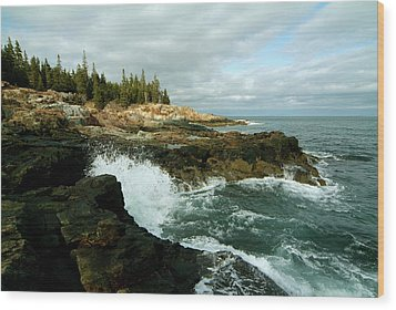 Acadia On The Shore Wood Print