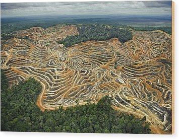 Access Roads And Terraced Fields Erase Wood Print by Mattias Klum